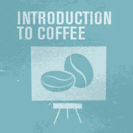 la-cittadella-caffe-corso-scae-introduction-to-coffee