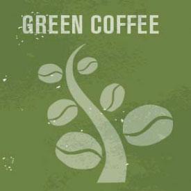 la-cittadella-caffe-corso-scae-green-coffee